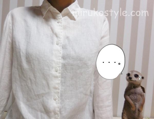 ただ着ただけの白シャツ